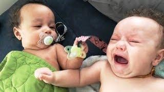 LIVE: Funny Twins Baby Arguing Over Everything - Fun And Fail Baby Videos