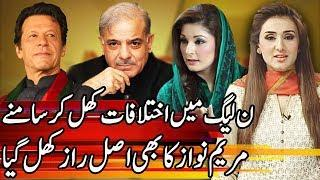 Maryam Nawaz snatched PML-N's narrative | Express Experts 1 July 2019 | Express News